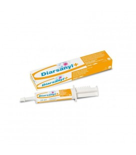 DIARSANYL PLUS CG 24ML