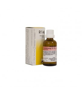 RECKEWEG R14 GOCCE 22ML